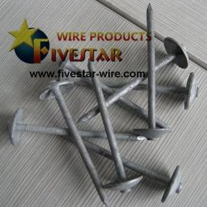 Hot dipped galvanized Umbrella head smooth shank roofing nails