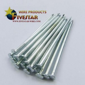 Electro galvanized common nails