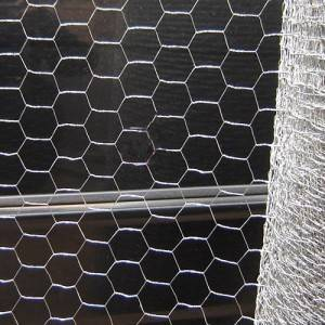 Industrial Metal Wire Hex Netting